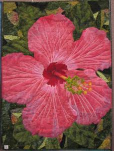 Lynn-Randall-Pretty-Pink-Petals-Hibiscus